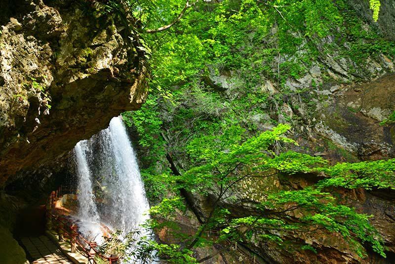 若緑の雷滝